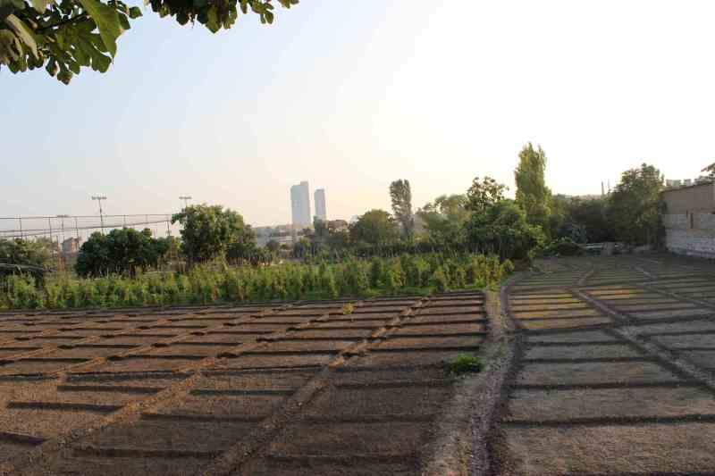 Kilise Garden, Yedikule